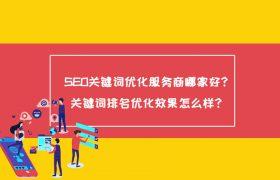SEO关键词优化服务商哪家好?关键词排名优化效果怎么样?插图