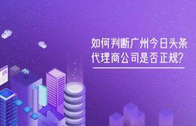 如何判断广州今日头条代理商公司是否正规?插图