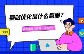 整站优化是什么意思?和关键词优化有什么区别?插图