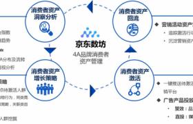 京东商城商业服务商品新零售融合为可持续性开发设计的顾客财产插图